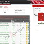 pasaport-nasil-alinir-6
