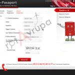 pasaport-nasil-alinir-7